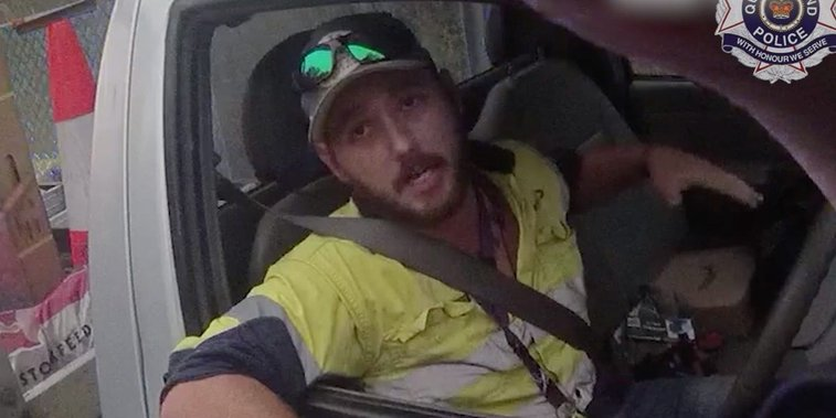 Australian fought off a snake while driving on the highway