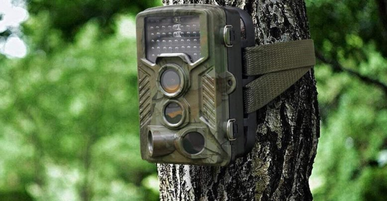 Motion-Activated Night Vision Wildlife Camera