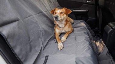 Ruffwear Dirtbag Seat Protector